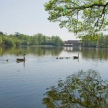 Inn-on-the-lake-Gallery-10